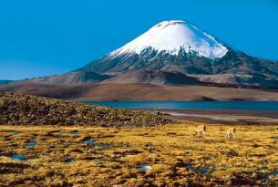 Chile: del desierto de Atacama a Chiloe a tu aire en coche de alquiler