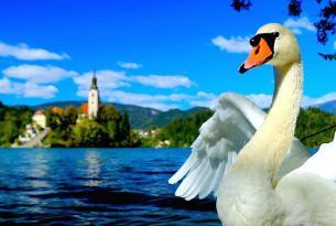 Estío en Eslovenia