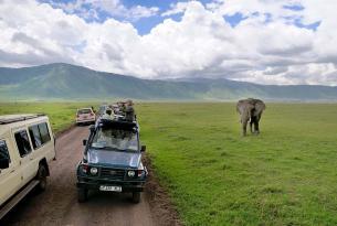 Zambia: el Valle Luangwa