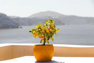 Grecia: Atenas, Santorini y Mykonos en grupo