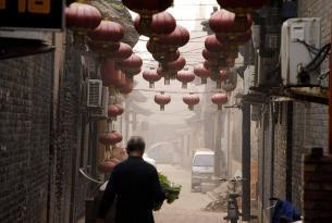 Osos Panda y Murallas en grupo, China