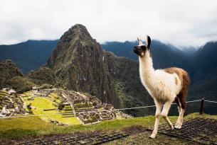 Perú: Cuzco y el increíble Machu Picchu
