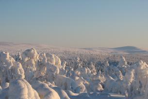 Laponia: actividades invernales en Ivalo (8 días)
