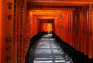 Japon esencial con excursiones en grupo