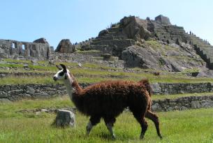 Perú esencial 11 días a medida compartiendo excursiones