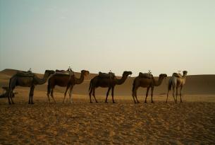 Marruecos:  el sur de Marruecos