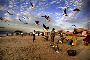 Mini-circuito por Gambia: 3 dias y playa