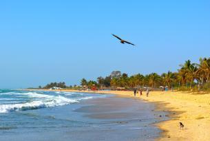 Gambia: minicircuito y playas en  Julio y Agosto (Salidas en sábado desde Barcelona directo)