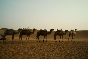 Marruecos en privado: Tánger, Fez y la Ciudad Azul