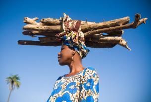 Gambia: minicircuito & Playa (9 dias)