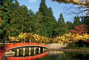Japón -  Isla de Honshu. Tokio, Kyoto y Monte Fuji - Salidas regulares con guía de habla castellana