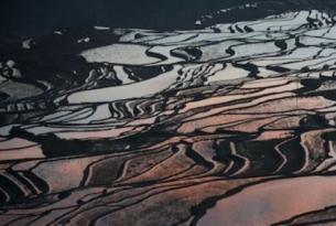 China -  Yunnan. Kunming, Yuanyang, Lijiang y Zhongdian - Salidas en grupo