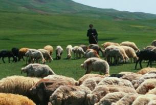 Irán -  Remoto Noroeste, Montes de Talesh y la Persia Clásica  - Salidas en grupo