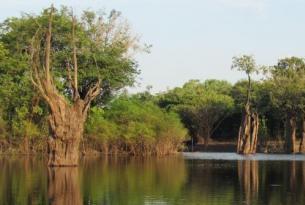 Brasil -  Amazonas, Pantanal, Salvador e Isla de Boipeba - Viaje en Grupo