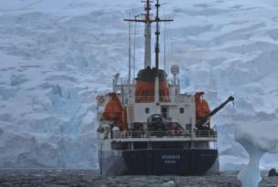 Antártida -  Cruceros de Expedición a la Península Antártica  - A bordo de los M/V Plancius, Ortelius y Ushuaia