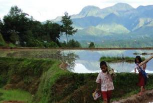 Indonesia -  Borneo, Sulawesi y Bali con opción Parque de Komodo - Salidas de JUN a OCT