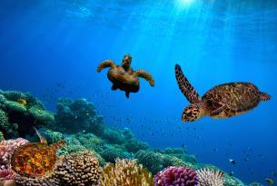 Islas Galápagos: visita al oeste del archipiélago