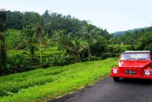 8 días por Bali (con Ubud y relax en Canggu)