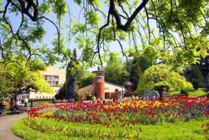 Tour por los Monasterios de Serbia