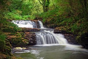 Irlanda a tu aire en coche de alquiler: Los Acantilados de Moher, Galway y el Parque Nacional de Burren (ideal familias)