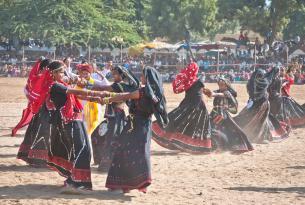 Norte de India: Especial Feria del Camello