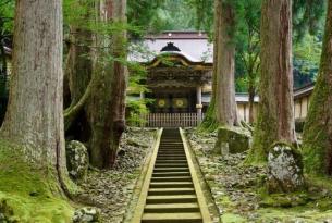 El Japón más auténtico en 13 días
