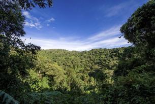 Aventura en Uganda en grupo (con acampadas en Parques Nacionales)