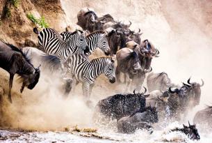 El Sueño de África (safari de lujo en grupo Premium)