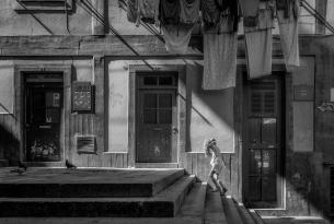 Capitales de Potugal: Lisboa y Oporto en grupo