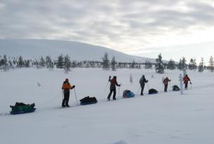 Laponia: Travesía del Parque Nacional Pallas Ounas - Tunturi