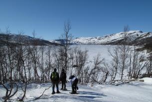 Noruega.  La ruta de los Fiordos en Invierno y Trineo de Perros