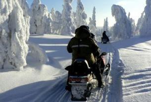 Finlandia. La Ruta del Lobo
