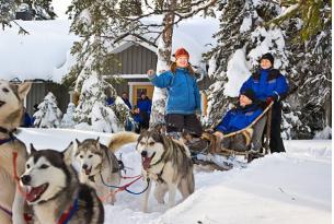 Finlandia. Fin de año en Laponia: Trineo de perros, Renos y Motonieve (8 días)