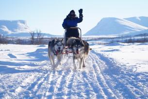 Fin de año en Lofoten: auroras boreales y trineo de perros en Noruega