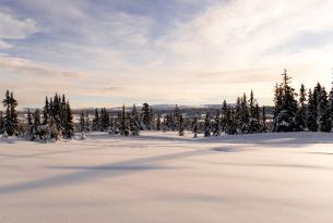Suecia: Travesía de exploración con esquís en el Parque Nacional de Sarek en grupo