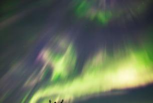 Noruega en septiembre: tesoros de Lofoten, ballenas y auroras en 7 días
