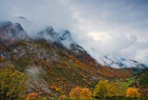 Asturias: rutas por los bosques de Somiedo