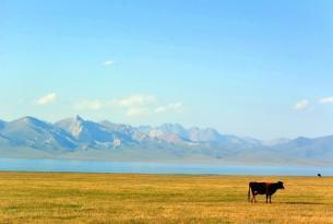 Kirguistán: Colores de Kirguistán