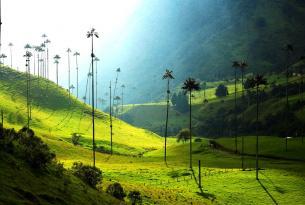 Colombia: Realismo Mágico