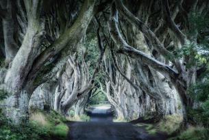 Escapada a Irlanda del Norte y sus escenarios de Juego de Tronos