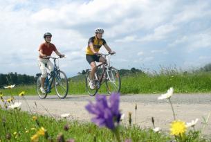 En bicicleta de Salzburgo a Viena