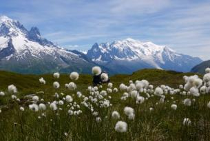 Un trekking sencillo por los miradores del Mont Blanc