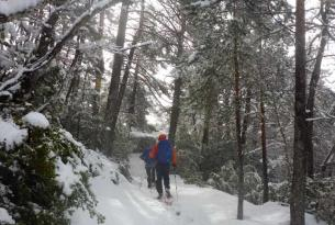 Raquetas de Nieve en Bulgaria  Macizos de Pilin y Rila
