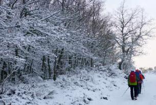 Raquetas de Nieve en Valle de Tena