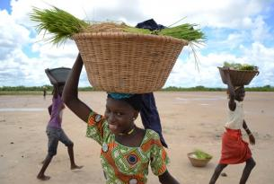 Fin de año en Gambia y Senegal