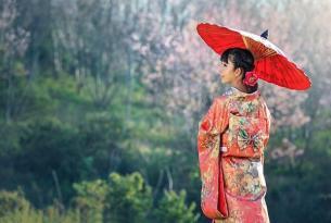 Japón: encanto nipón