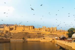 Tour Taj tras el rastro de los tigres
