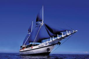 Viaje buceo safari Chuuk a bordo del velero Siren