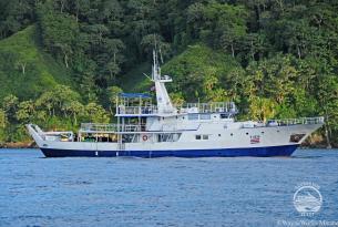 Viaje buceo a Costa Rica a la Isla del Caño a bordo de Okeanos Aggressor