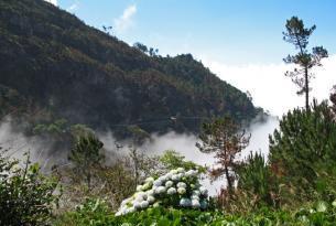 Maravillas de Madeira y Porto Santo